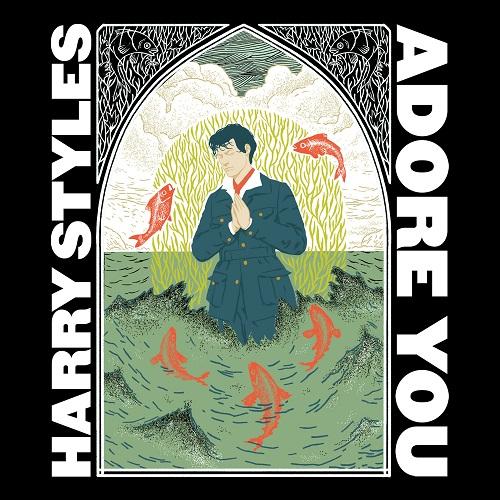 HARRY STYLES sur Evasion